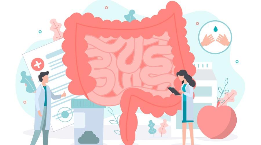 益生菌鞏固腸道健康